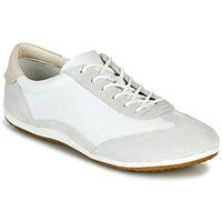 Sko Dame Lave sneakers Geox D VEGA Hvid / Grå