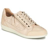 Sko Dame Lave sneakers Geox D MYRIA Beige
