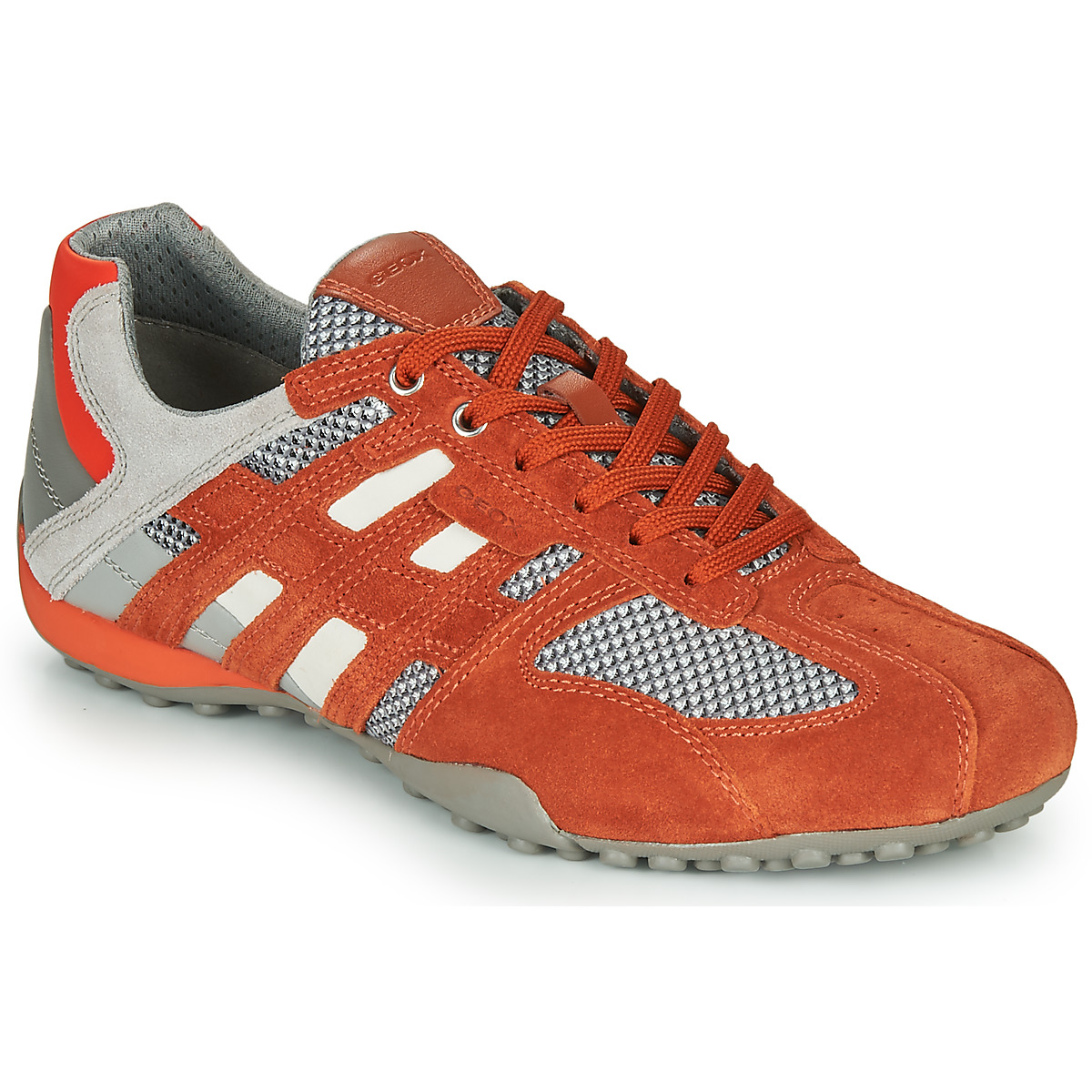 Se Sneakers Geox  UOMO SNAKE ved Spartoo