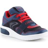 Sko Børn Lave sneakers Geox JR Xled Boy Flåde