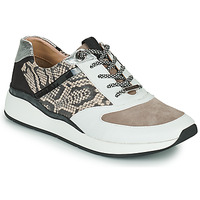 Sko Dame Lave sneakers JB Martin 1KALIO Hvid / Beige / Sort