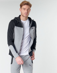 textil Herre Sweatshirts Puma EVOST HOOD Grå