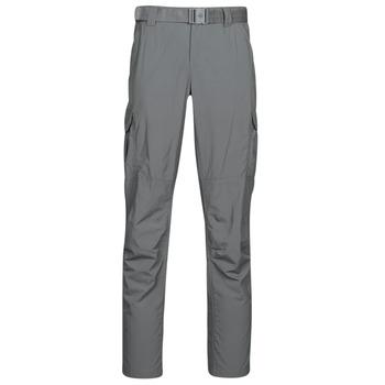 textil Herre Cargo bukser Columbia SILVER RIDGE II CARGO PA Grå