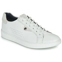 Sko Herre Lave sneakers Base London BUZZ Hvid