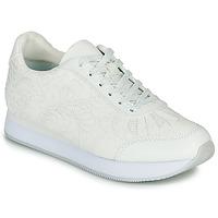 Sko Dame Lave sneakers Desigual GALAXY LOTTIE Hvid