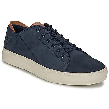 Sko Herre Lave sneakers Timberland ADV 2.0 CUPSOLE MODERN OX Blå