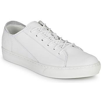 Sko Herre Lave sneakers Timberland ADV 2.0 CUPSOLE MODERN OX Hvid