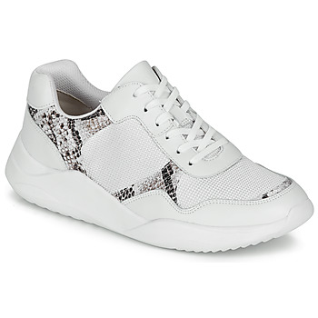 Sko Dame Lave sneakers Clarks SIFT LACE Hvid / Pyton