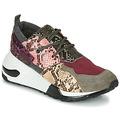 Sko Dame Lave sneakers Steve Madden