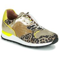 Sko Dame Lave sneakers Mjus CAST Kaki / Leopard
