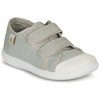 Sko Børn Lave sneakers Citrouille et Compagnie GLASSIA Grå