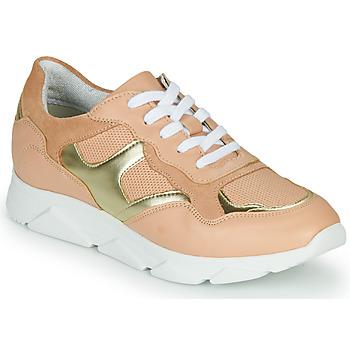 Sko Dame Lave sneakers André HAVILAH Pink