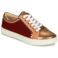 Sko Dame Lave sneakers André LA FUNAMBULE Bronze