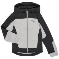 textil Dreng Sweatshirts Puma EVOST HOOD JKT Grå