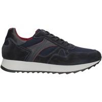 Sko Herre Lave sneakers Nero Giardini A901221U Blue