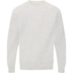 textil Herre Sweatshirts Sg Raglan Light Oxford