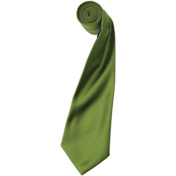 textil Herre Slips og accessories Premier PR750 Oasis Green