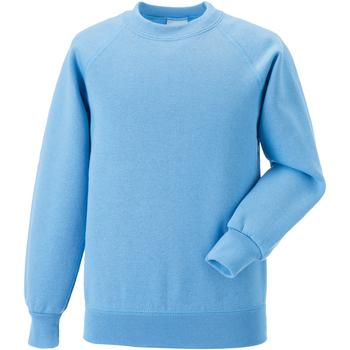 textil Børn Sweatshirts Jerzees Schoolgear 7620B Sky Blue