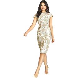textil Dame Korte kjoler Girls On Film Alicia Snake Print
