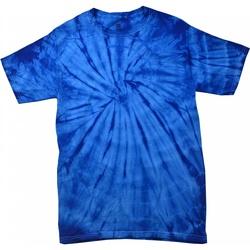 textil Børn T-shirts m. korte ærmer Colortone Spider Spider Royal