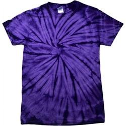 textil Børn T-shirts m. korte ærmer Colortone Spider Spider Purple