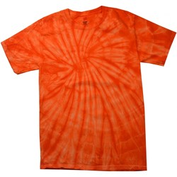 textil Børn T-shirts m. korte ærmer Colortone Spider Spider Orange