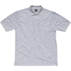 textil Pige Polo-t-shirts m. korte ærmer Sg SG50K Light Oxford