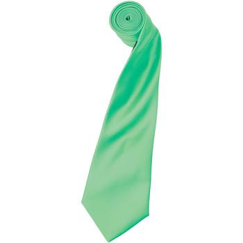 textil Herre Slips og accessories Premier Satin Turquoise