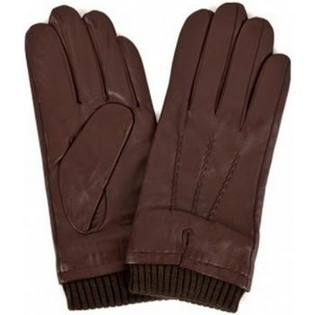 Accessories Herre Handsker Eastern Counties Leather  Brown
