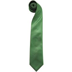 textil Herre Slips og accessories Premier  Emerald