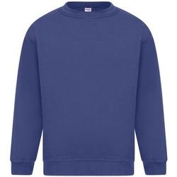 textil Herre Sweatshirts Absolute Apparel Sterling Royal