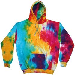 textil Herre Sweatshirts Colortone TD31M Multi Rainbow