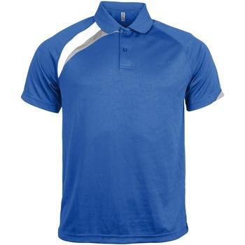 textil Herre Polo-t-shirts m. korte ærmer Kariban Proact PA457 Royal Blue/ White/ Storm Grey