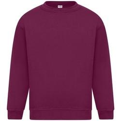 textil Herre Sweatshirts Absolute Apparel Sterling Burgundy