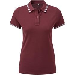 textil Dame Polo-t-shirts m. korte ærmer Asquith & Fox AQ021 Burgundy/Sky