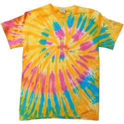 textil Dame T-shirts m. korte ærmer Colortone Rainbow Aurora