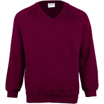 textil Børn Sweatshirts Maddins  Burgundy
