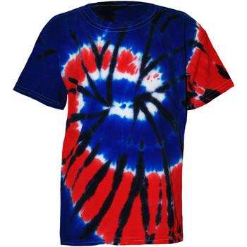 textil Børn T-shirts m. korte ærmer Colortone TD02B Independence