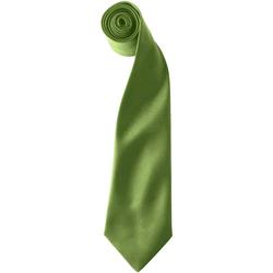 textil Herre Slips og accessories Premier  Oasis Green