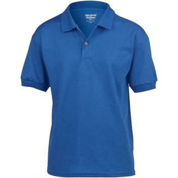 textil Børn Polo-t-shirts m. korte ærmer Gildan 8800B Royal