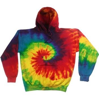 textil Herre Sweatshirts Colortone TD31M Rainbow