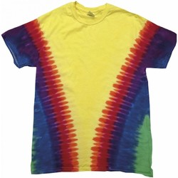 textil Børn T-shirts m. korte ærmer Colortone TD05B Rainbow Vee
