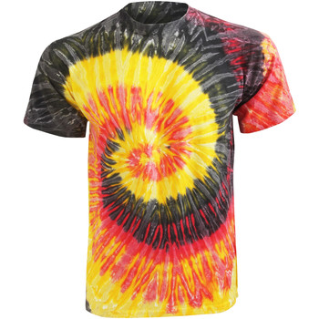 textil Dame T-shirts m. korte ærmer Colortone Rainbow Kingston
