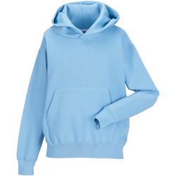 textil Børn Sweatshirts Jerzees Schoolgear 575B Sky Blue