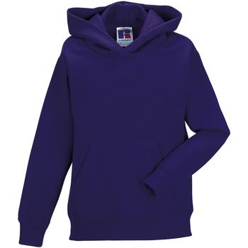 textil Børn Sweatshirts Jerzees Schoolgear 575B Purple