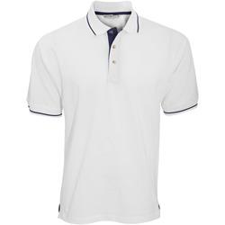 textil Herre Polo-t-shirts m. korte ærmer Kustom Kit KK606 White/Navy