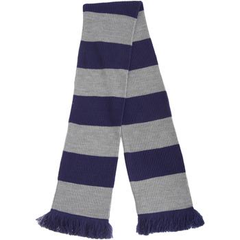 Accessories Halstørklæder Floso  Blue/Silver