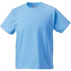 textil Børn T-shirts m. korte ærmer Jerzees Schoolgear ZT180B Sky Blue