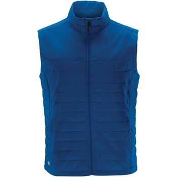 textil Herre Veste / Cardigans Stormtech KXV-1 Azure Blue