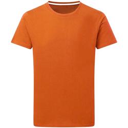 textil Herre T-shirts m. korte ærmer Sg Perfect Orange